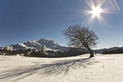 Winter happines (giogra_) Tags: appennino reggiano prati di sara cusna crinale monteorsaro winter neve snow inverno