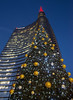 Christmas tree in Milan (Fil.ippo) Tags: xmas christmas tree albero natale unicredit skyscraper tallest gaeaulenti bluehour orablu d610 buonnatale filippo filippobianchi milano milan tower merrychristmas
