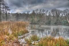 Talygarn Lake with icy fringe