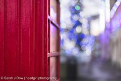 A Frame of Two Halves-5713 (he4dgirl) Tags: christmas melksham sarahjdow wiltshire christmastree creativeportraitphotography dawn earlymorning headgirlphotographycom mistymorning night telephonebox