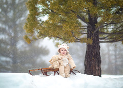 Snow Day! ({jessica drossin}) Tags: jessicadrossin baby photography portrait mountains snow tree sled child sleigh snowflakes wwwjessicadrossincom happy winter