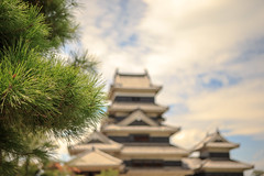 Matsumoto, Japan (Atomic Eye) Tags: matsumoto castle japan bokeh matsumotojō historic crowcastle karasujō blackexterior naganoprefecture keep tenshukaku originalwoodeninteriors externalstonework nationaltreasureofjapan flatlandcastle hirajiro 1504 shimadachisadanaga earth stone wood evergreen needles