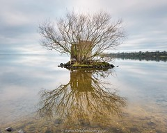 Wild Fowler's Hide (Stephen_Lavery) Tags: countyarmagh landscape loughneagh morrowspoint northernireland stephenlavery calm freshwater lake serene still waterscape
