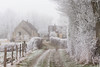It is time to return (martine_vise) Tags: winter winterphotography fog snow rurallife fenced trees ice gel frost frosted path landscape landscapephotography winteriscoming winterishere wintertime winterday countryside countrylife leperche normandie orne france