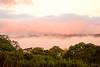 ..Ghost and rainforest --Fantômes et jungle..Madré de Dios (geolis06) Tags: geolis06 pérou peru perú amériquedusud southamerica ríomanu amazonie amazonia rainforest jungle forêt forest madrededios manu parcnationaldemanú manúnationalpark 2016 pantiacollatour olympusm1240mmf28