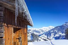 DSC01885.jpg (D.Goodson) Tags: didier bonfils goodson côte 2000 planey beaufortain ski rando