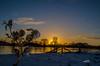 Sonnenuntergang Januar 2017 (ubl57) Tags: tags ems sonnenuntergang emsland winter schnee eiche zaun januar