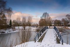 Beukenpark-50-1 (stevefge) Tags: beukenpark beuningen landscape snow winter gelderland bridges water ice trees bomen reflectyourworld reflections nederland netherlands nature nl natuur nederlandvandaag sky