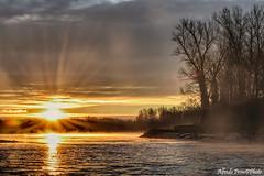Show must go on ............ (alfvet) Tags: alba sunrise veterinarifotografi parcodelticino fiume river sun sole natura atmosfere ngc npc