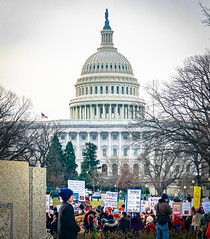 2017.01.29 Oppose Betsy DeVos Protest, Washington, DC USA 00224