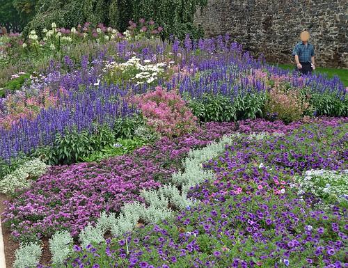 Blumenvielfalt im Spätsommer