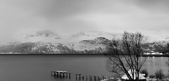 early morning fjord crossing (lunaryuna) Tags: norway northernnorway arcticregion ullsfjordenfjord tromsfylke ferrysvensbybreivikeidet firstferry morning winter season seasonalweather cold landscape seascape bleakskies mountainrange lyngenalps panorama panoramicviews le longexposure lunaryuna blackwhite bw monochrome