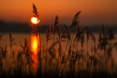 Sonnenuntergang heute am See