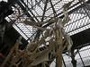 chicken skeleton (cleanskies) Tags: ounhm oxfordnaturalhistorymuseum museum tyrannosaur chicken giantchicken skeleton