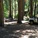 Acampamento top na Floresta Nacional Sierra