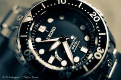SEIKO PROSPEX MarineMaster Professional 600m SpringDrive (type SBDB001) (nakagane masayuki   ) Tags: divers tag watch omega professional type sinn seiko panerai 600m springdrive prospex sd600 marinemaster mm600 brightring sbdb001