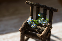 Take A Seat by Captured Heart, on Flickr