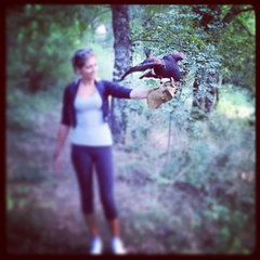 "La comunicazione avviene quando, oltre al messaggio, passa anche un supplemento di anima. (Henri Bergson) #comunicazione #team #training #outdoor #outdoorexperience #experientiallearning #training • <a style=""font-size:0.8em;"" href=""http://www.flickr.com/photos/96907830@N02/21357099891/"" target=""_blank"">View on Flickr</a>"