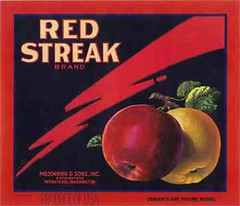 "RedStreak • <a style=""font-size:0.8em;"" href=""http://www.flickr.com/photos/136320455@N08/21460740442/"" target=""_blank"">View on Flickr</a>"