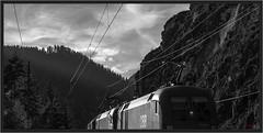 "Taurus Monochrom ("" Wiener Schule "") Tags: austria siemens loco locomotive taurus bb semmering lokomotive lok 1016 1116 semmeringbahn"