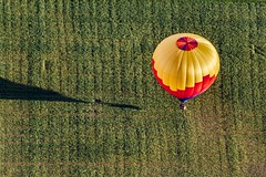 Six Pack (Paul Leb) Tags: canada field balloon hamilton joe pack québec hotairballoon six paysage champ montgolfière iberville internationaldemontgolfièresdesaintjeansurrichelieu