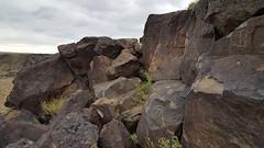 Petroglyphs in Petroglyph NM