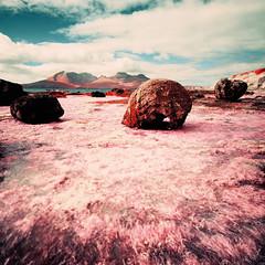 Laig Bay (Mark Rowell) Tags: 120 6x6 film mediumformat ir scotland highlands kodak hasselblad infrared expired swc 903 eigg eir aerochrome laigbay