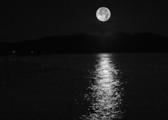 Moonshine (Starkrusher) Tags: nightphotography blackandwhite bw idaho priestlake moonshine whitelightning