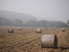 corn bales and the fog (un2112) Tags: morning november autumn fall fog rural landscape countryside corn hungary agriculture bale agricultural g7 sülysáp
