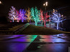 Vitruvian Lights 2015-6 (MikeyBNguyen) Tags: us texas unitedstates christmastree christmaslights christmastrees addison vitruvianpark vitruvianlights