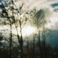 0088_08 (www.cjo.info) Tags: sky cloud plant blur tree film 35mm hospital scotland flora europe kodak unitedkingdom bokeh olympus outoffocus analogue asylum europeanunion westerneurope livingston compact olympusxa psychiatrichospital shallowdepthoffield westlothian geolocation completelyoutoffocus dechmont focusblur kodakportra160 bangourvillagehospital geocity exif:make=fujiphotofilmcoltd geocountry camera:make=fujiphotofilmcoltd geostate camera:model=sp3000 exif:model=sp3000 geo:lat=5591995 geo:lon=35522861111117