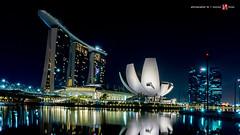 Singapur - Marina Bay - Helix Bridge - Marina Sands - ARTSCIENCE MUSEUM (riese.laurenc) Tags: museum marina bay district financial singapur helixbridge artscience marinasands