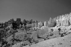 Bryce Canyon (Kirby Wright) Tags: bryce canyon national park trail fairyland loop 100 100th anniversary parks service system trees tree shadow shadows rock geology geologic formation structure sand rocks black white bw lines line wilderness desert dry barren contrast nikon d700 tamron 2040mm 2040 mm f2735 2735 wide angle outdoors