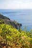 IMG_5934 (Eric.Burniche) Tags: italy italia italyeurope cinqueterre cinqueterreitaly riomaggiore riomaggioreitaly riomaggioreitalia manaroloa manarolaitalia manarolaitaly corniglia cornigiliaitaly vernassa vernazza monterossoalmare laspezia liguriansea liguria cliffs ocean hiking hike path trail coast sea vines vineyard sky bluesky