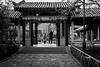 Enter the kingdom (Go-tea 郭天) Tags: jinanshi shandongsheng chine cn street urban city outside outdoor people bw bnw black white blackwhite blackandwhite monochrome asia asian china chinese canon eos 100d 24mm prime jinan man woman together old traditional garden garte court yard enter entrance exit back backside light vegetation historical history door open magic tree winter cold line coats couple in out throught house