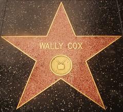 "Hollywood Walk of Fame - Wally Cox - ""Mr. Peepers"" / Marlon Brando?? (ramalama_22) Tags: la los angeles hollywood walk fame star wally cox television tv mr peepers character actor milquetoast image meek rumor marlon brando close friendship"