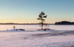 GroundFog (Me in ME) Tags: maine topsham androscoggin river seasmoke groundfog mist fog winter ice snow sunrise