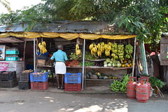 The man in blue (yellaw travel) Tags: india inde kerala alleppey fruits fruit shop échoppe exotique banane banaes banana