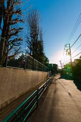 20161229-_DQH0170.jpg (ykgraph) Tags: 東京 foveon 日本 art sdquattroh sdquattro sigma 1224mmf4