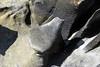 Cabo Higuer, Jaizkibel, Pays Basque, Espagne (Christian Giusti) Tags: géologie geology géomorphologie geomorphology géographie geography géographiephysique physicalgeography flysch cénozoïque cenozoic crétacé cretaceous patrimoinegéologique geologicalheritage météorisation weathering geoheritage