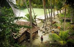 Beach man (Sacule) Tags: beach man togean island tropical verde green vignette sulawesi indonesia palm tree sand hut bungalow canon powershot sx200is travel southeastasia viaje backpack asia 2011