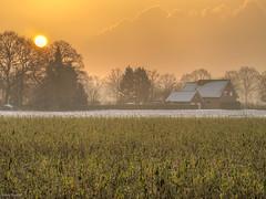 Misty morning (fredy_egdorf) Tags: 2017 belichtungsreihe dunst hdr nebel photomatix sonne südkirchen westerfelde mistymorning tonemapping