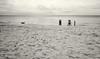 Walking the Humans (lancekingphoto) Tags: beach ocean sand dog strangers crystalbeach destin florida people walking