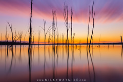 Manasquan Reservoir Long Exposure Sunrise (Mike Ver Sprill - Milky Way Mike) Tags: manasquan reservoir sunrise panorama pano new jersey howell beautiful sunset sun clouds reflections trees dead bare baren cloudy colorful panoramic mike ver sprill milky way michael versprill fine art photography nikon d800 1424 wide angle lens landscape nature birds amazing serene peaceful sunrays burst rays sunshine outdoor waterfront water