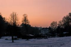Landscape (bottomtoys) Tags: suisse switzlerland nature landscape paysage soleil sun sunset clouds nuage arbre foret