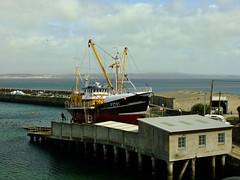Beam Trawler (Desmond paul) Tags: beam trawler william sampson stevenson pz 191 south lizard southwest england newlyn harbour 4 cornwall