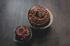 Cupcakes (MorboKat) Tags: toronto thebeaches thebeach food cupcake baking cake icing sprinkles cooking product baked bakedgoods chocolate chocolatecupcake yummy delicious dessert tasty