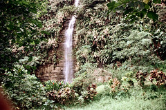 28-155 (ndpa / s. lundeen, archivist) Tags: cliff color film fiji rural 35mm countryside waterfall nick southpacific 28 1970s hillside 1972 dewolf oceania fijian pacificislands nickdewolf photographbynickdewolf reel28