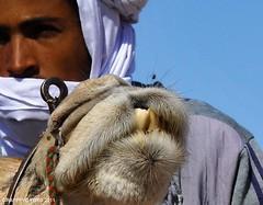 Rencontres el abiodh sidi cheikh