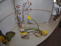 """Japanese flower arrangement by Yoshie Mizuno """"Ichiyo School"""". (nano.maus) Tags: fisheye lauritzengardens japaneseflowerarrangement omahabotanicalsociety japaneseambiencefestival"""